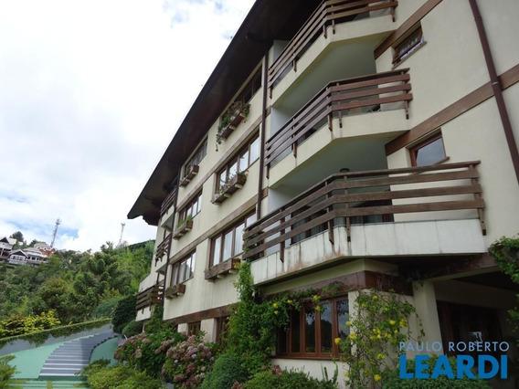 Apartamento - Morro Do Elefante - Sp - 555213