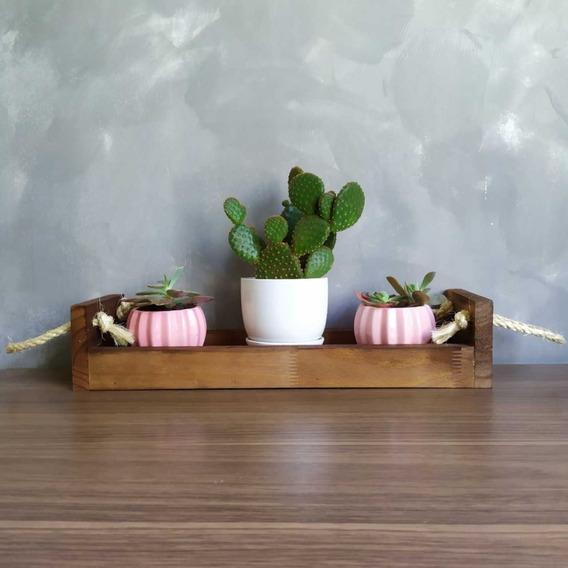 Suporte De Vasos Para Suculentas / Cactus - Madeira Encerada