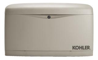 Visita Técnica Asesoramiento Grupo Electrogeno Kohler Honda