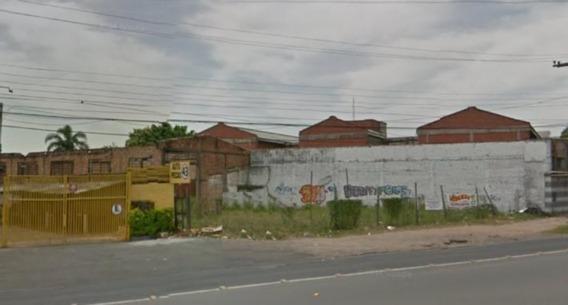 Terreno Em Bela Vista - Cs31004217