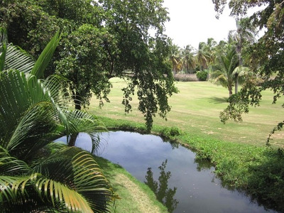 One Bedroom Condo Furnished For Sale In Bavaro - Punta Cana.
