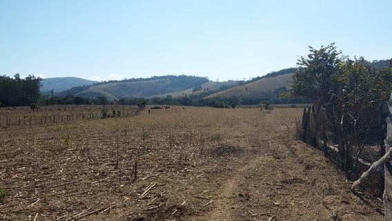 Fazenda A Venda Em Borda Da Mata Às Margens Da Rodovia - Ete173