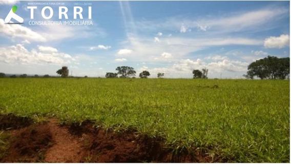 Fazenda A Venda Em Palmas - Fa00009 - 33994616