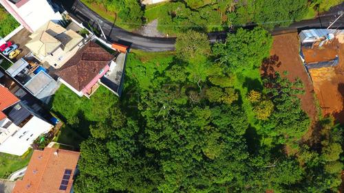 Lote Com 6.500m2 No Cônego - 304