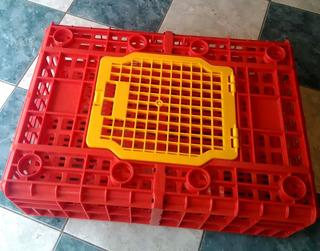 Jaula Guacal Plástico Transporte De Pollos Pavos Gallinas