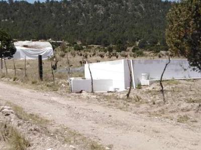 Terreno De Uso Mixto De 17 Hectáreas En Venta En La Sierra De Arteaga, Coahuila