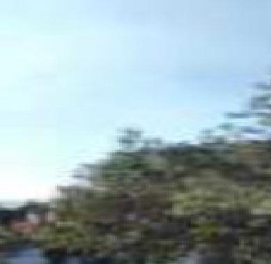 Santa María Tepepan Xochimilco. Terreno Residencia En Venta. Desarrollado Sobre Una Superficie Plana De 6 000 Metros Cu