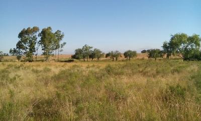 Campo 23 Hectareas Vendo