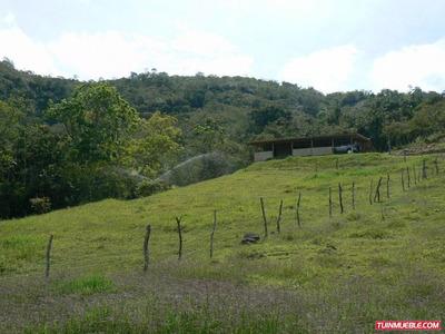 Hacienda O Finca Venta