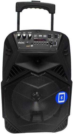 Caixa De Som Bluetooth Portátil 100w Rádio Fm Usb Aux Vicini