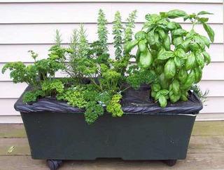 Maceta Huerto Earthbox Todo Tipo De Plantas Incluye Envío