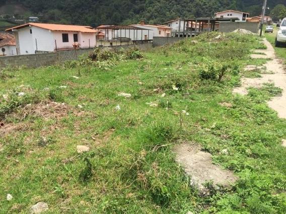 Terrenos En Venta Valera Larielys Perez