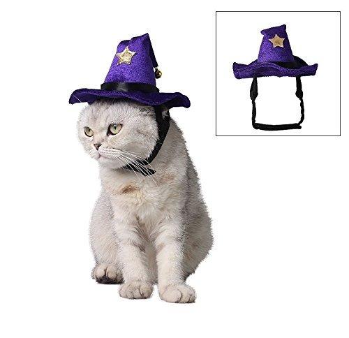 779affdf091 Stock Show Mascota Sombrero Mágico De Halloween Gorra De Br