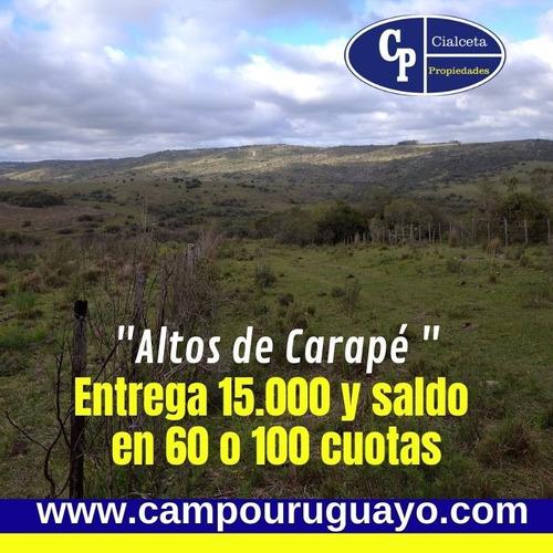 Chacras  Altos De Carapé, 5 Hectáreas, Se Financian