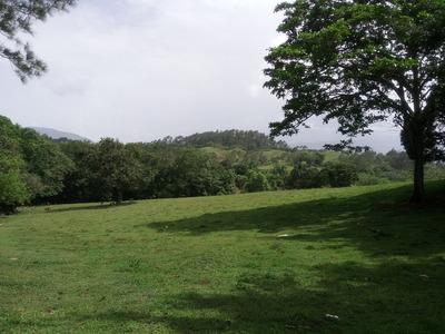 Finca En Venta En Buena Vista (rmf-110)