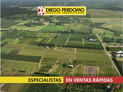 Predio De 22830m² En Venta, Montevideo.
