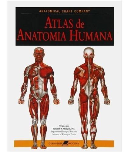 Livro - Atlas De Anatomia Humana: Anatomical Chart Company