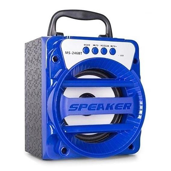 Caixa De Som Amplificada Bluetooth Bateria Usb 309 Radio Fm