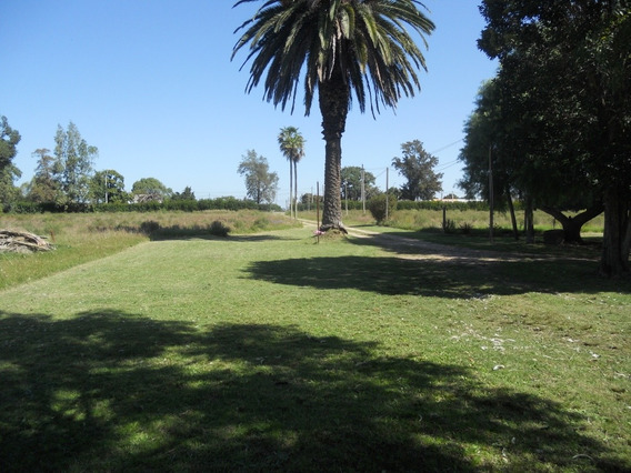 Terrenos En Ciudad Del Plata - Santa Monica