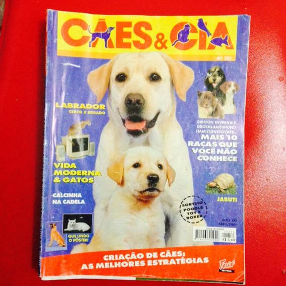 Cães E Cia - Labrador