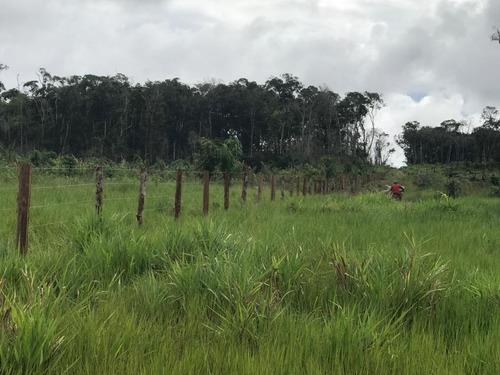 Vendo Fazenda De 1700hec Pecuaria/cultura Em Roraima (6096)