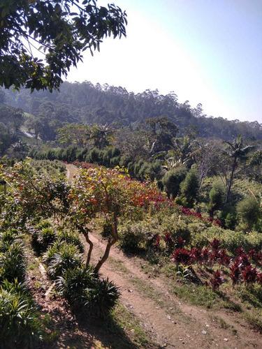 Lindo Sitio Para Plantio E Moradia