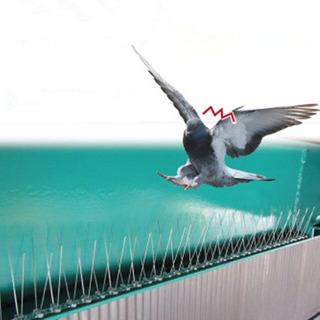 Puas Anti-palomas Y Aves 10 Mts.