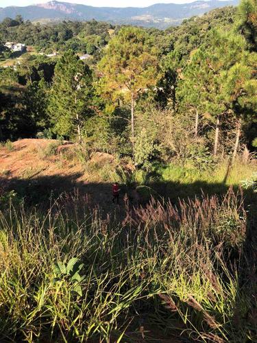Imagem 1 de 7 de Terreno Em Declive - Linda Vista - Atibaia