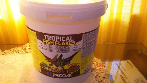 Prodac Tropical Fish Flakes 1 Kg Alimento Peces Acuario Dulc