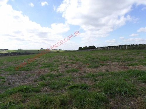 Venda - Área Industrial - Zona Rural - Limeira - Sp - D8833