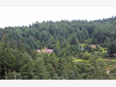 Terreno En Venta Hermoso Fracc Campestre Residencial, Lotes Dentro Del Bosque C Crédito