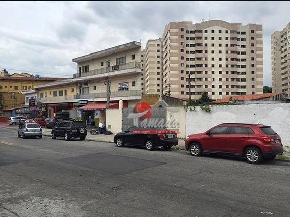 Terreno Comercial Para Locação, Cidade Líder, São Paulo. - Te0165