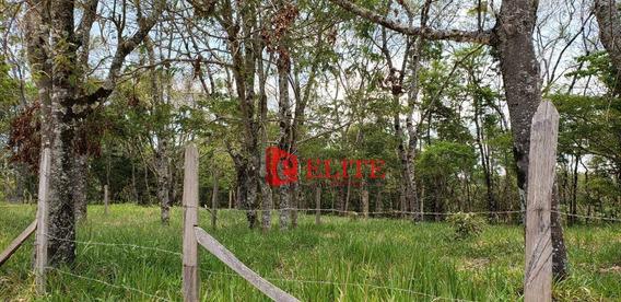 Terreno À Venda, 630 M² Por R$ 200.000,00 - Centro - Santo Antônio Do Pinhal/sp - Te1120