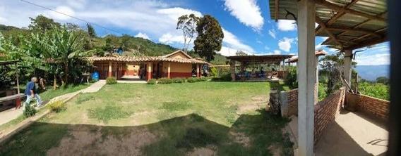 Granja En Venta, Michelena, Tachira, Venezuela