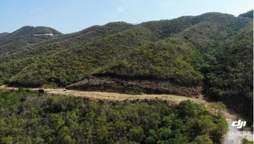 Imagen 1 de 4 de Carretera Nacional Terreno En Venta 132 Hectáreas