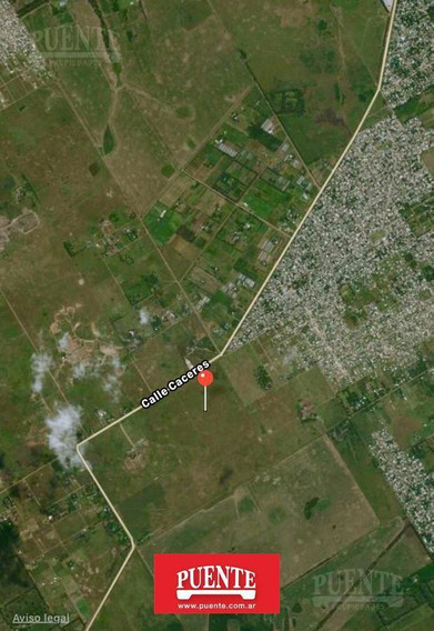 Terreno - San Vicente - Canning - Ruta 16 - Ruta 58