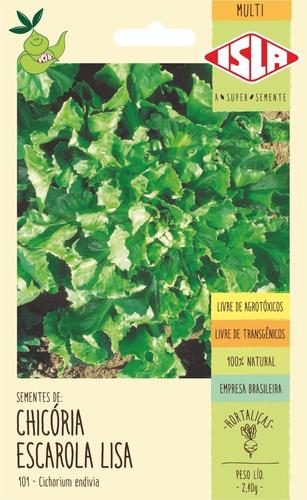Sementes De Chicória Escarola Lisa            1.500 Sementes