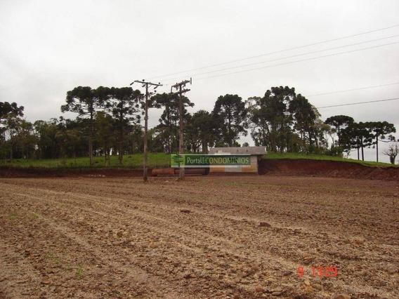 Terreno À Venda, 10500 M² Por R$ 500.000,00 - Zona Rural - União Da Vitoria/pr - Te0564