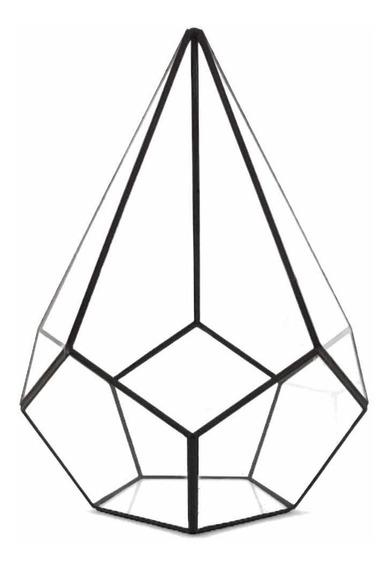 Terrario Gota Grande Vacío-incluye Embalaje P/mercadoenvíos