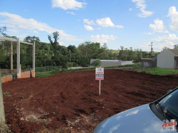 Terrenos Para Alugar - 13650.2970