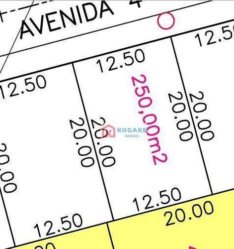 Terreno À Venda, 250 M² Por R$ 257.315,00 - Putim - São José Dos Campos/sp - Te1681