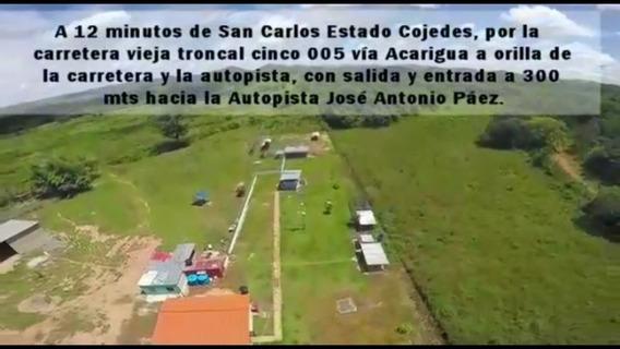 Finca Producción 100 Has + 2.300 Mts2 San Carlos, Cojedes
