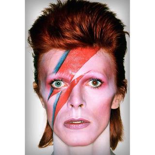 Placa - Quadro - Decorativo - David Bowie - Música - (v267)