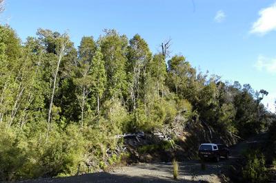 Parcela 28 Lago Tepuhueico 12.200metros Chonchi Chiloé