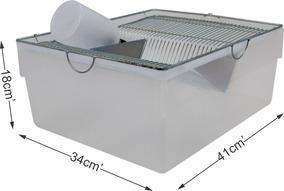 Biotério Ratos Camundongos Mercol Hamster - Médio Nº03