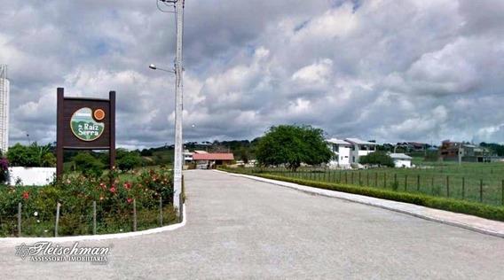 Terreno Residencial À Venda, Zona Rural, Gravatá - Te0031. - Te0031