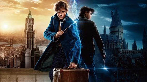 Coleção Harry Potter + 2 Filmes Animais Fantástico