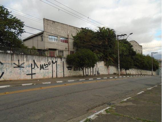 Galpão Comercial À Venda, Cidade Parque Alvorada, Guarulhos. - Ga0069