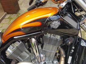 Harley V-rod Muscle,nova 2014/14 Unico Dono,apenas 3.000 Km!