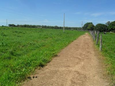 Fazenda Em Pindorama - To, Dupla Aptidão - 404